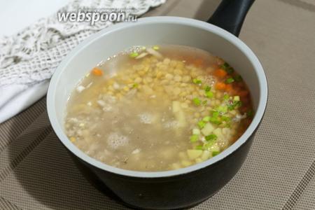 Заливаем все продукты куриным бульоном и ставим варить суп на небольшом огне.