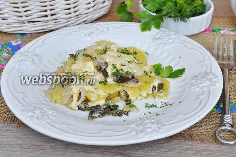 Рецепт Запеканка из картофеля с папоротником в мультиварке