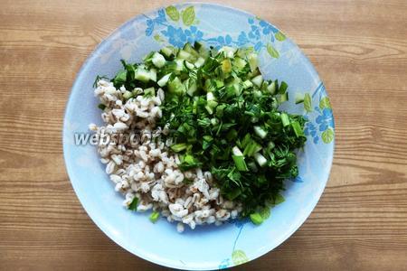 Смешаем вареную перловку, нарезанные огурцы и зелень в салатнике.