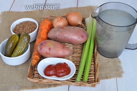 Приготовим гречку, огурцы, картофель, морковь, лук, сельдерей, томатную пасту, масло растительное, бульон. Бульон использую из индейки, приготовила его заранее.