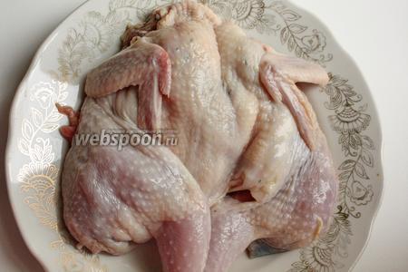 Тушки перепелов промываем в холодной воде. Поскольку основным мясом перепела есть грудка, не портим её, разрезаем перепёл по спинке.