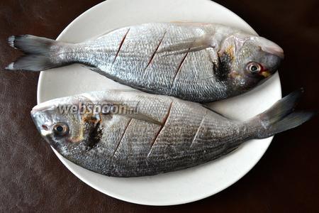 Рыбу очистить и сделать по 3 надреза с каждой стороны.