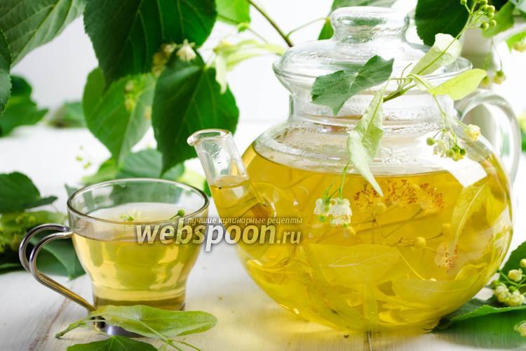 Фото Чай из липы