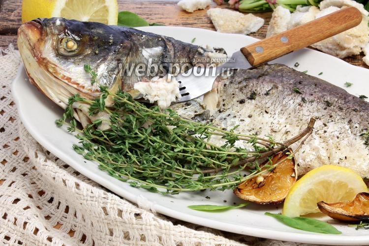 рыба толстолобик рецепты приготовления балык