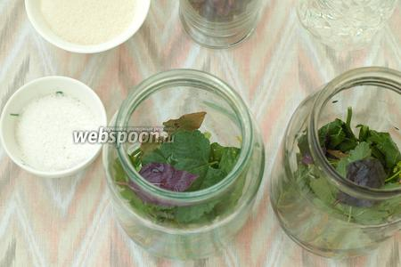 Банки хорошо вымыть, стерилизовать не нужно. На дно банок распределить специи: хрен, листья смородины, укроп, лавровый лист, по 2 листочка базилика и 2 зубка чеснока.