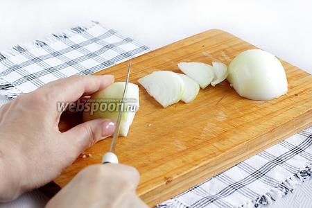Лук нарезать крупными перьями.