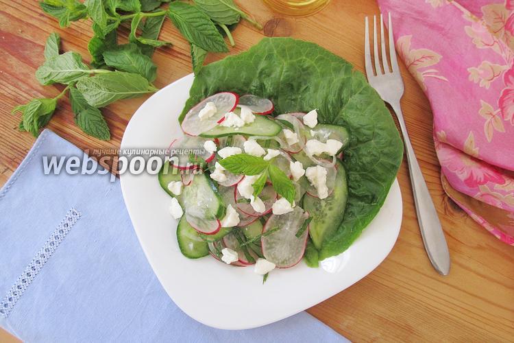 Рецепт Салат из огурцов с редисом и мятой