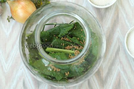В чистые банки на дно выложить листья хрена, укроп, чеснок и зёрна горчицы.