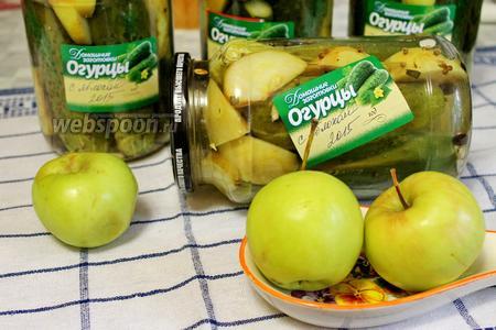 Огурцы, маринованные с яблоками