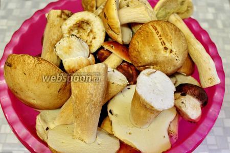 Для маринования возьмём белые грибы.