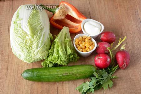 Для приготовления нам понадобится капуста пекинская, кукуруза консервированная, огурцы, перец болгарский, салат айсберг, редис, петрушка, майонез.