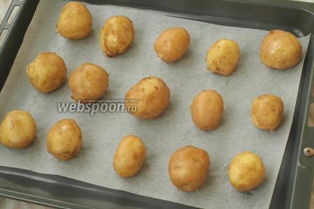 С картофеля слить воду и обсушить. Застелить противень пергаментом и выложить картофель на небольшом расстоянии друг от друга. Полить немного маслом.