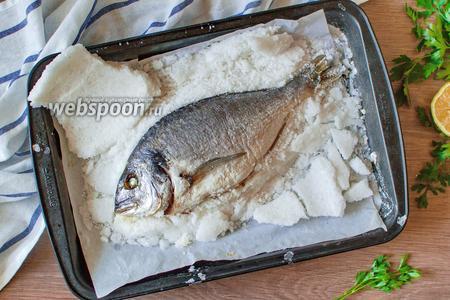 Дорада в панцире из соли