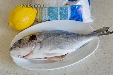 Для приготовления потребуется дорада, соль крупная, лимон, чуть перца и вода.