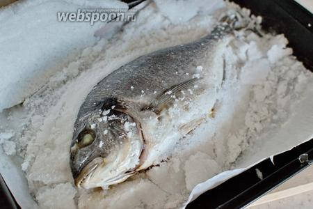 При подаче постучите по панцирю, чтобы он растрескался, и аккуратно достаньте рыбу.