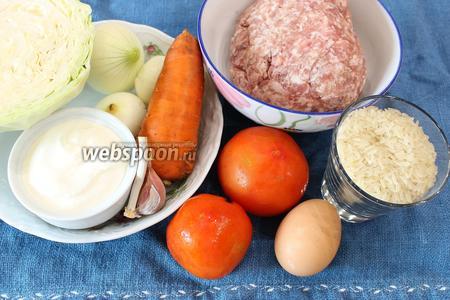 Для приготовления ленивых голубцов в духовке нам необходимо подготовить белокочанную капусту, лук, морковь, помидоры, рис, яйцо, фарш свино-говяжий, соль по вкусу и немного сахара по желанию.