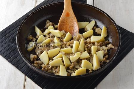 Картофель (2 штуки) предварительно отварить в кожуре, очистить от кожуры и нарезать дольками. Выложить картофель к грибам. Приправить солью(2 щепотки), чёрным молотым перцем(1 щепотка). Аккуратно перемешать и прогреть 2-3 минуты.