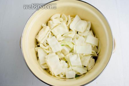 Снова выложить слой капусты.