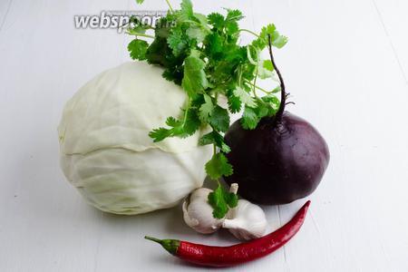 Подготовить для закваски капусту, свёклу, чеснок, острый перец, кинзу. Выбирайте небольшие по размеру кочаны капусты и клубни свеклы, чтобы нарезка была удобной.