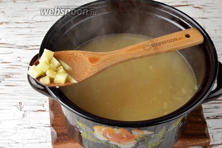 1,5 литра куриного бульона довести до кипения. Выложить в него содержимое сковороды, а также очищенный картофель (500 г), нарезанный мелким кубиком. Варить, пока картофель не станет мягким.