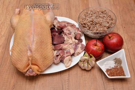 Для приготовления необходима утка, яблоки, гречка отварная, утиная печень, куриные желудки, чеснок, специи для птицы, перец чёрный молотый, соль.
