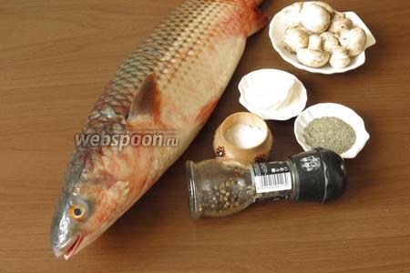 Подготовим рыбу — готовые стейки (435-450 грамм, 3 штуки) или тушку для разделки, грибы, сливки, специи для рыбы.