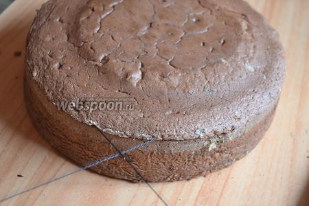Вставить нитку, как на фото и как бы завязываем узел. Замечательный способ разрезания бисквитного коржа. Разрезать торт на три равных круга, таким же способом.