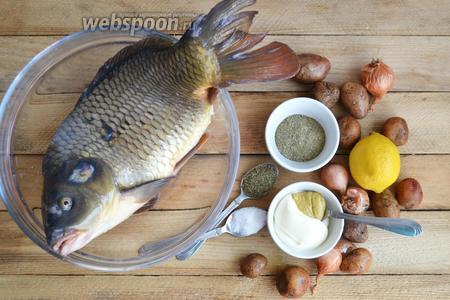 Подготавливаем необходимые продукты: карп, картофель, лимон, лук, сметана, горчица, соль, прованские травы, специи для рыбы.