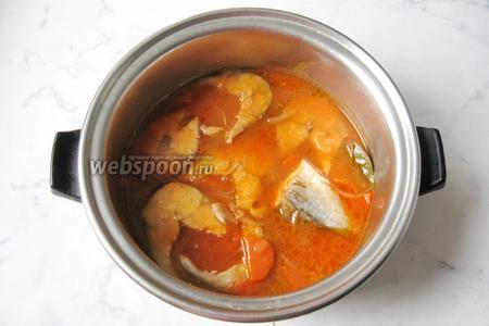 Скумбрия в томатном соусе готова. Подаём на второе с картофельным пюре или просто с кусочком белого хлеба.