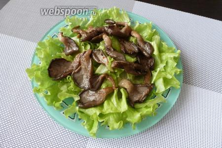 На салат кладём остывшие вёшенки.