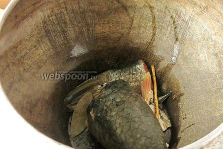 Кладём перец горошком (5 штук) и душистый (5 штук), 2 лавровых листа, 1 корень петрушки.