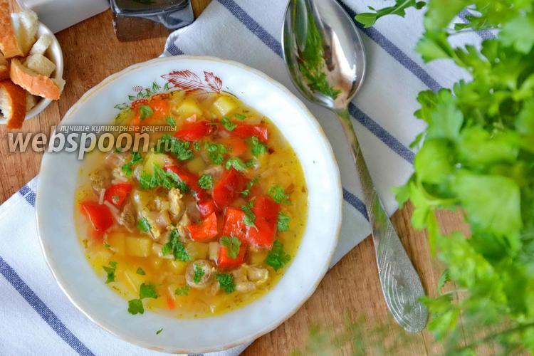 Фото Суп с куриными желудочками