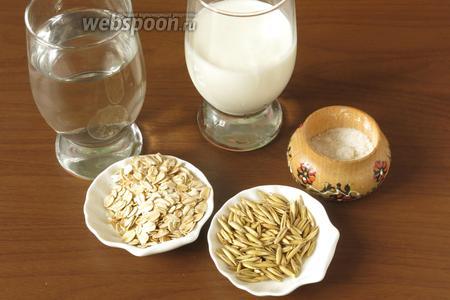 Ингредиенты: геркулес (овсянка, не экстра), овёс (факультативно, добавляется для усиления брожения), кефир или в постном варианте хлеб ржаной, вода кипячёная остывшая, соль по вкусу (факультативно).