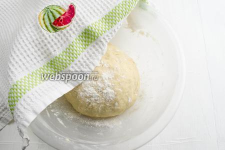 Тесто должно получиться мягким, послушным. Оставить его в миске. Накрыть полотенцем. Поставить в тепло на 1,5 часа подняться.
