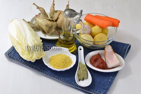 Чтобы приготовить капустняк украинский со свежей капустой, нам понадобятся перепела, пекинская капуста, пшено, соль, чёрный перец горошком, лавровый лист, морковь, картофель, лук, сало, томатная паста, подсолнечное масло.
