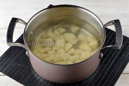 Картофель (150 г) очистить, нарезать небольшими кусочками. Опустить картофель в кипящую воду (2,5 л) и готовить 10 минут.