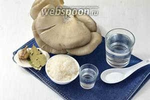 Для работы нам понадобятся вёшенки, сахар, соль, вода, уксус 9%, чёрный перец, лавровый лист, чеснок.