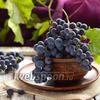 Как заморозить виноград