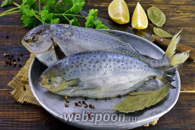 Фото Как чистить масляную рыбу