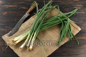 Фото совета Как хранить зелёный лук в холодильнике