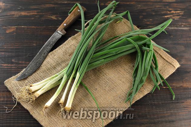 Фото Как хранить зелёный лук в холодильнике