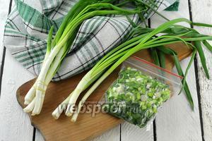 Фото совета Как заморозить зелёный лук