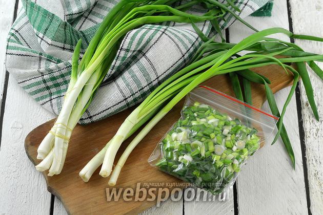 Фото Как заморозить зелёный лук