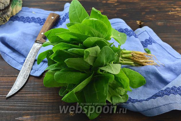 Фото Как сушить шпинат