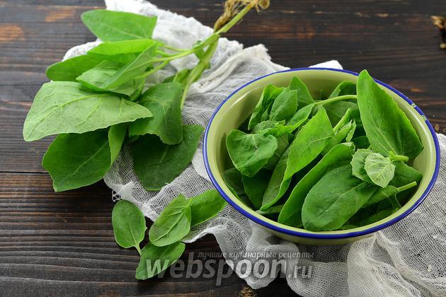 Фото Как варить шпинат
