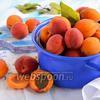 Фото совета Как сушить абрикосы