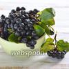 Фото совета Как заморозить черноплодную рябину