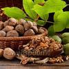 Фото совета Как хранить грецкие орехи