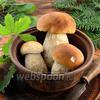Фото совета Как чистить белые грибы