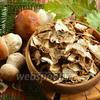 Как сушить белые грибы